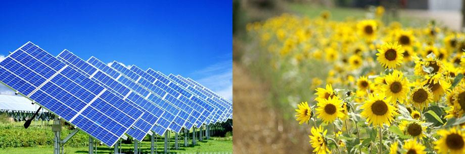 Recursos naturales renovables - Fotos energias renovables ...